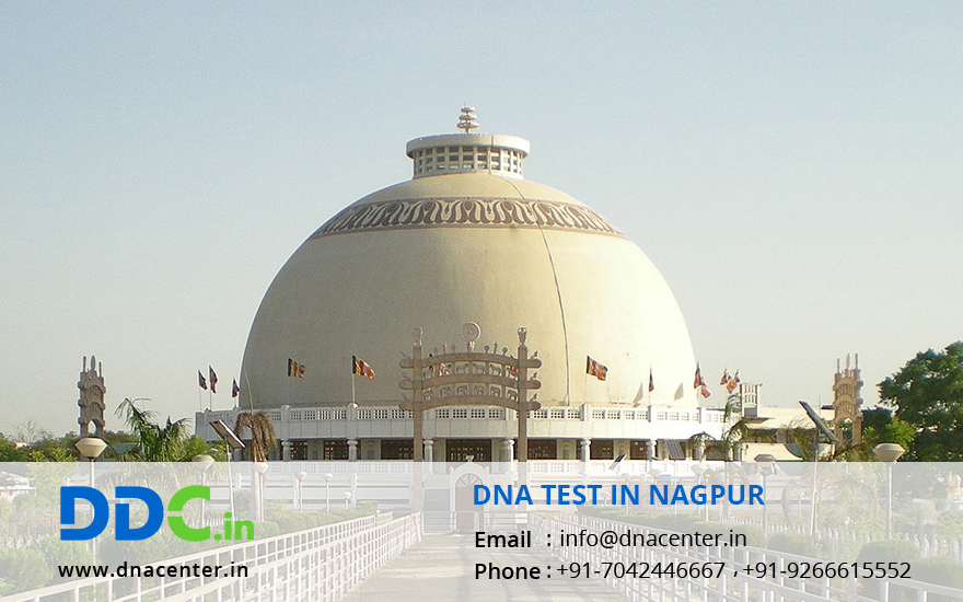 DNA Test in Nagpur