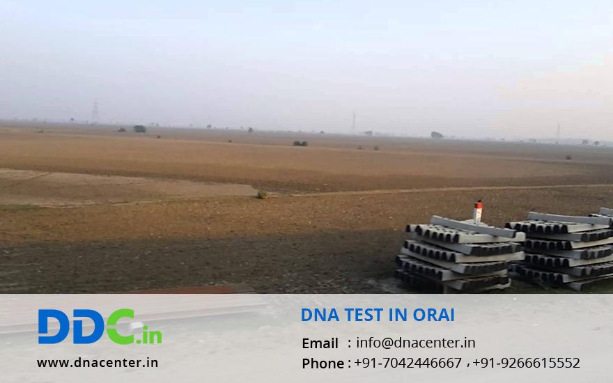 DNA Test in Orai