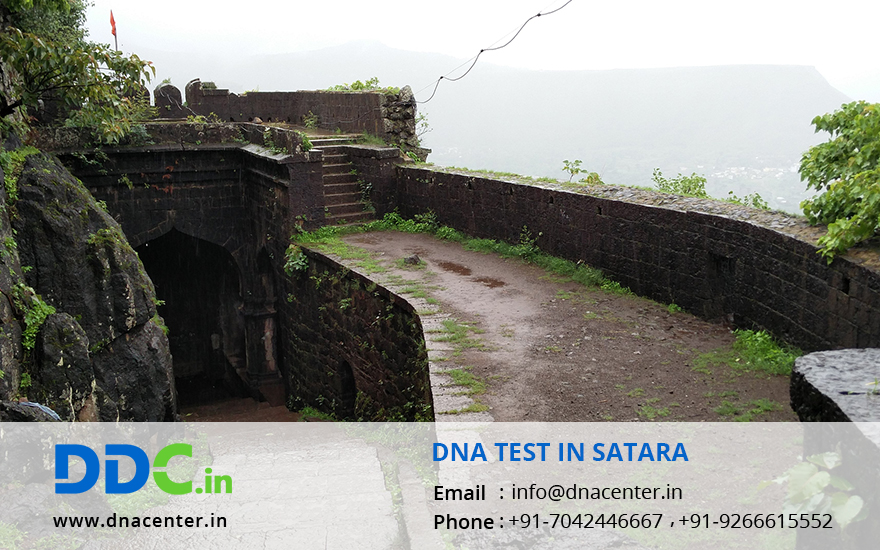 DNA Test in Satara
