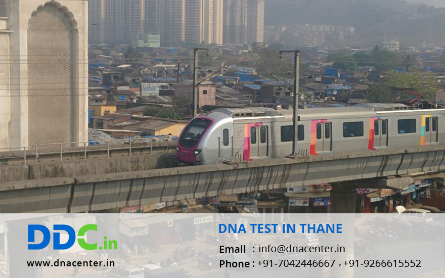 DNA Test in Thane