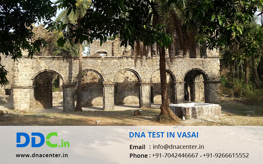 DNA Test in Vasai