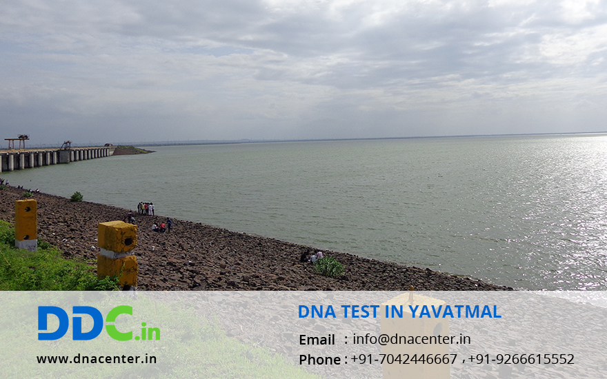 DNA Test in Yavatmal