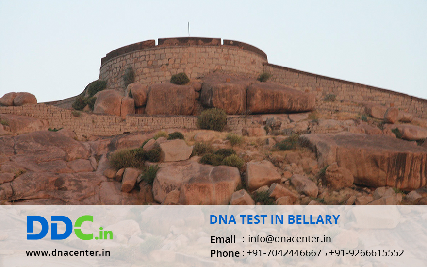 DNA Test in Bellary