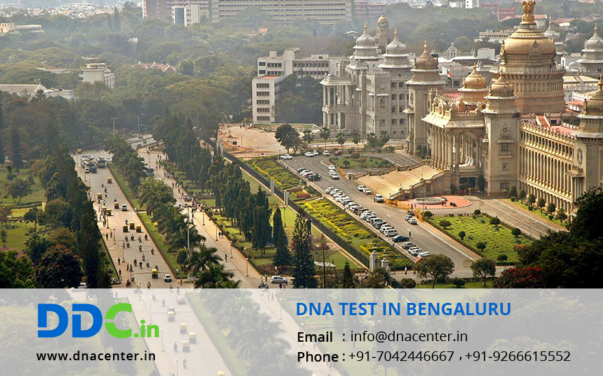 DNA Test in Bengaluru