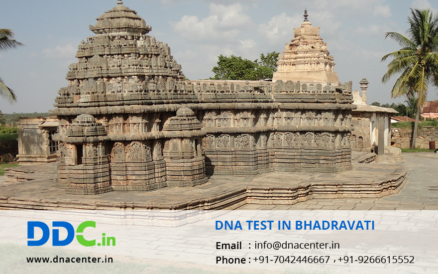 DNA Test in Bhadravati