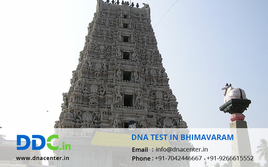 DNA Test in Bhimavaram