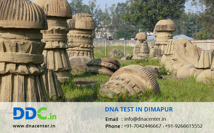 DNA Test in Dimapur