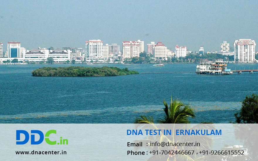 DNA Test in Ernakulam