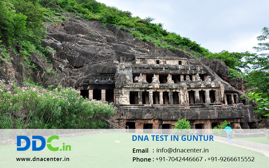 DNA Test in Guntur