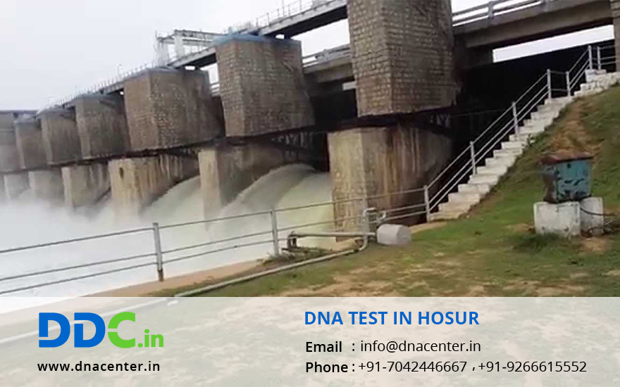 DNA Test in Hosur