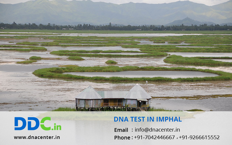DNA Test in Imphal