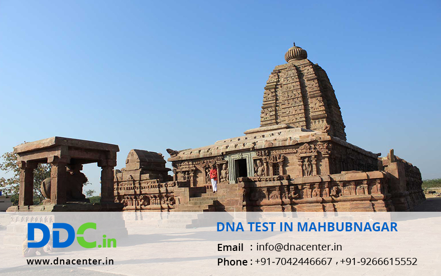 DNA Test in Mahbubnagar