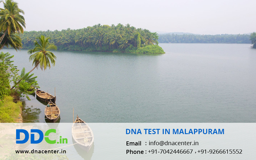 DNA Test in Malappuram
