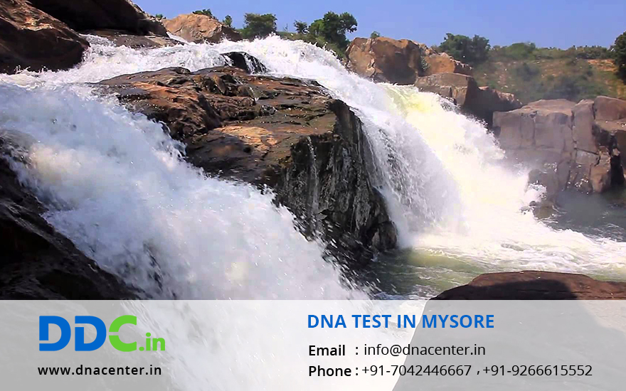 DNA Test in Mysore