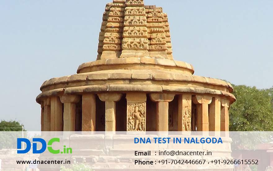 DNA Test in Nalgoda