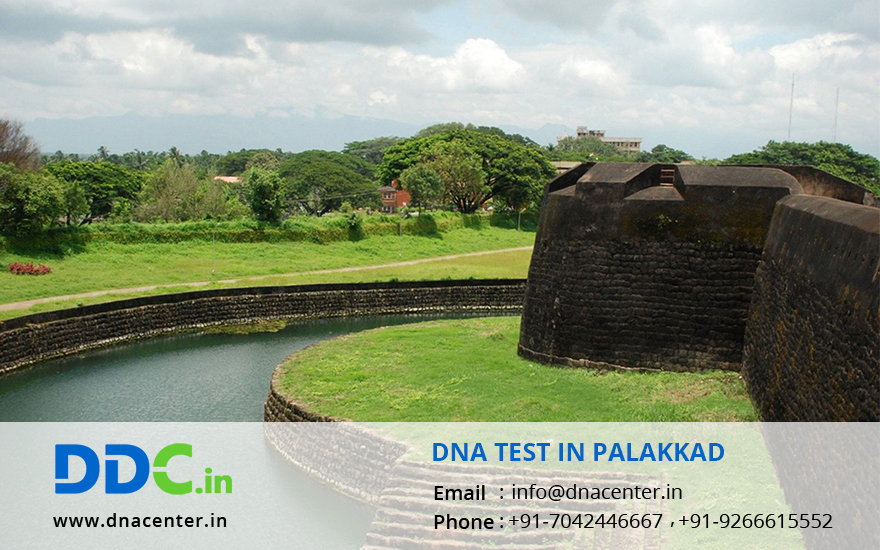 DNA Test in Palakkad