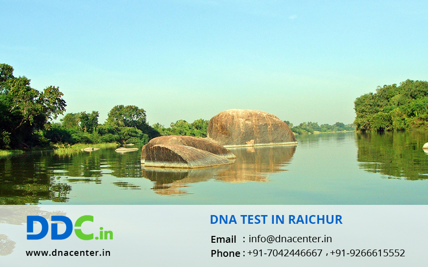 DNA Test in Raichur