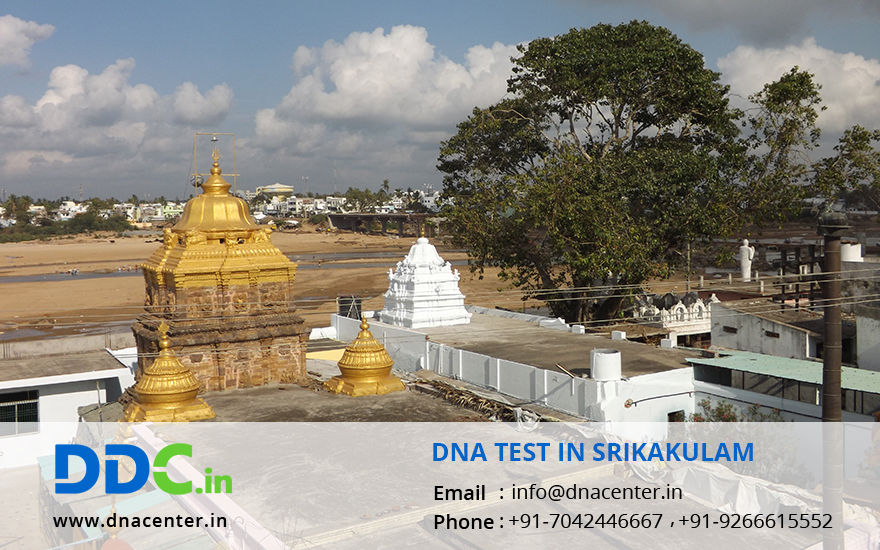 DNA Test in Srikakulam