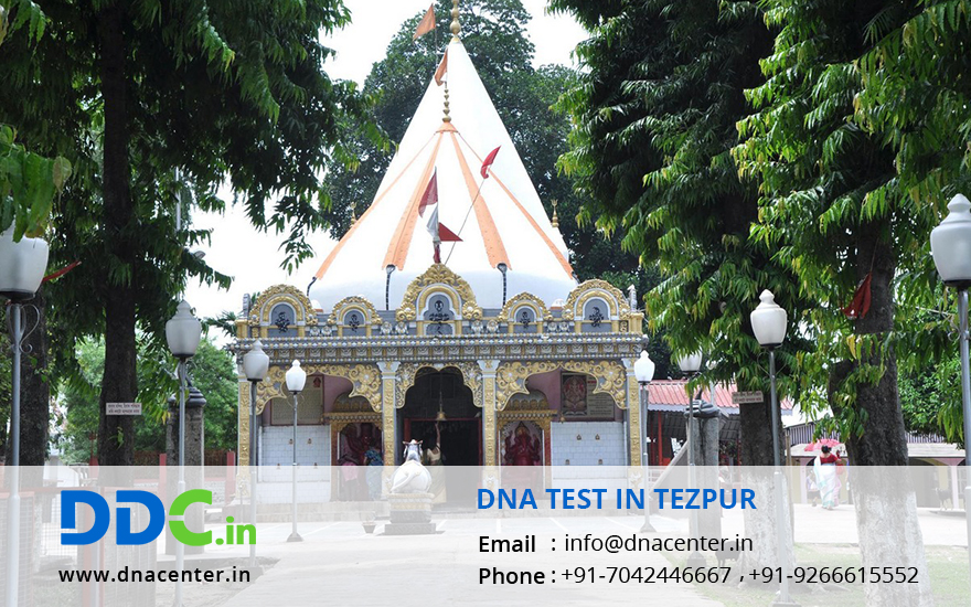 DNA Test in Tezpur