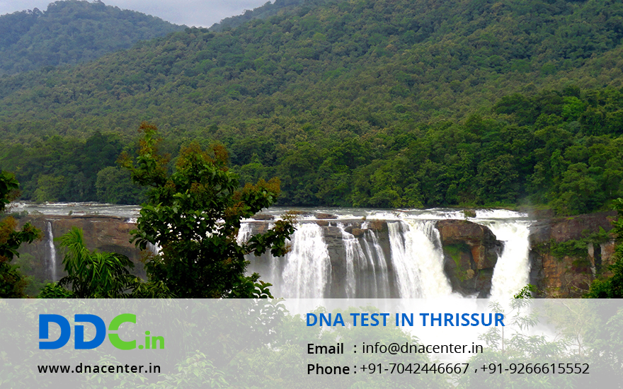 DNA Test in Thrissur