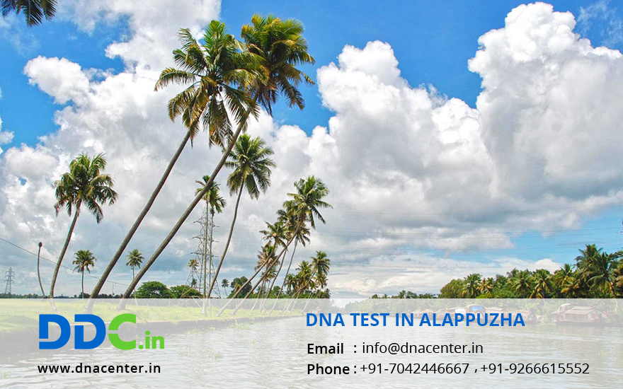 DNA Test in Alappuzha