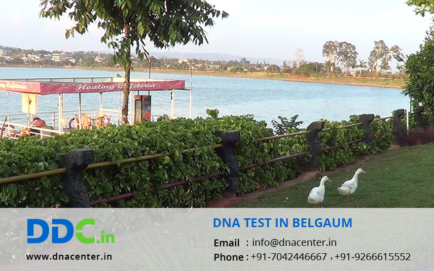DNA Test in Belgaum