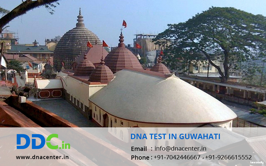 DNA Test in Guwahati