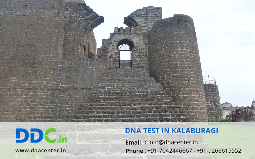 DNA Test in Kalaburagi