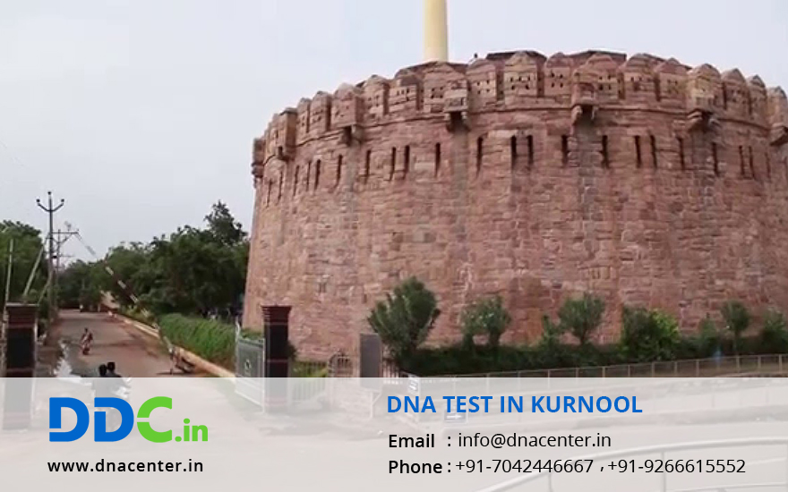 DNA Test in Kurnool