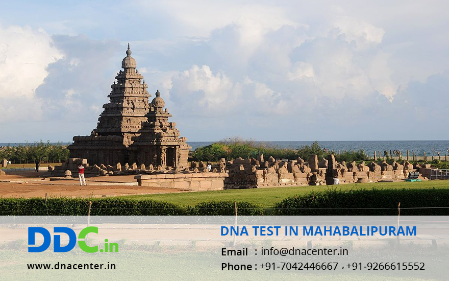 DNA Test in Mahabalipuram