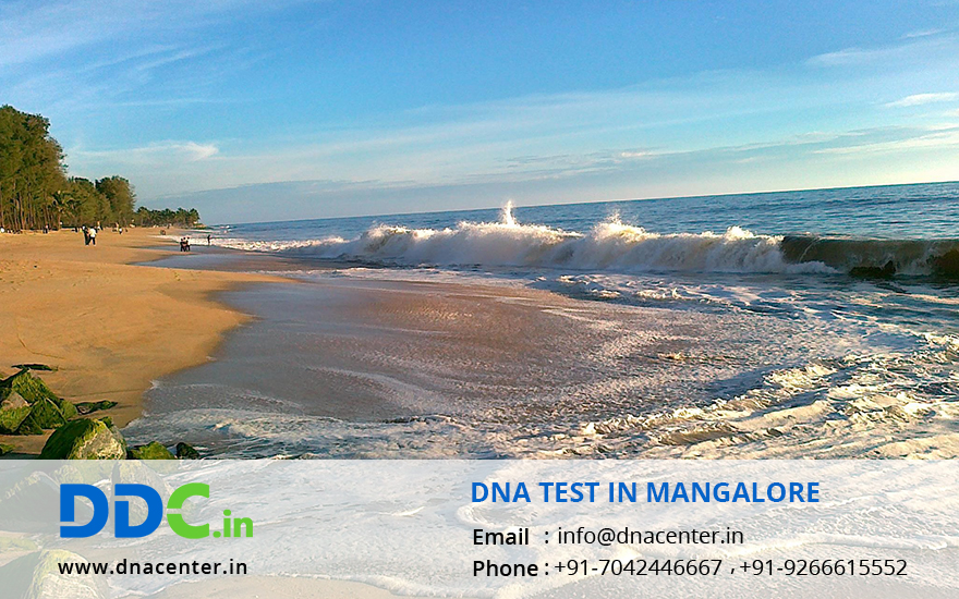 DNA Test in Mangalore