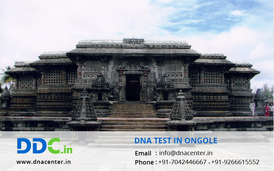 DNA Test in Ongole
