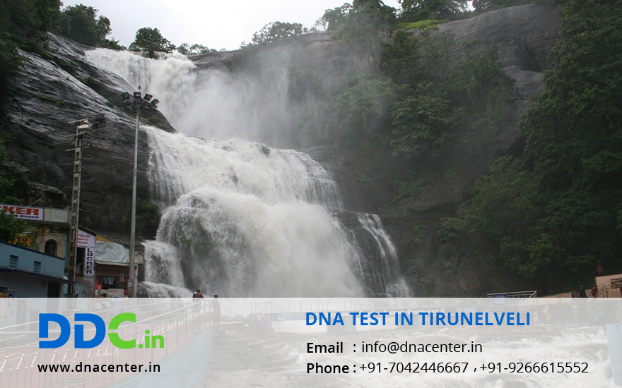 DNA Test in Tirunelveli