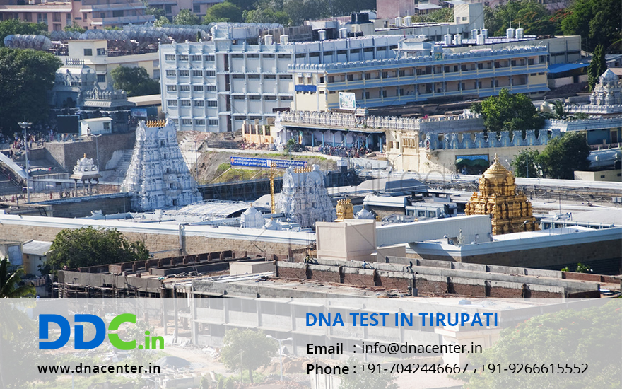 DNA Test in Tirupati