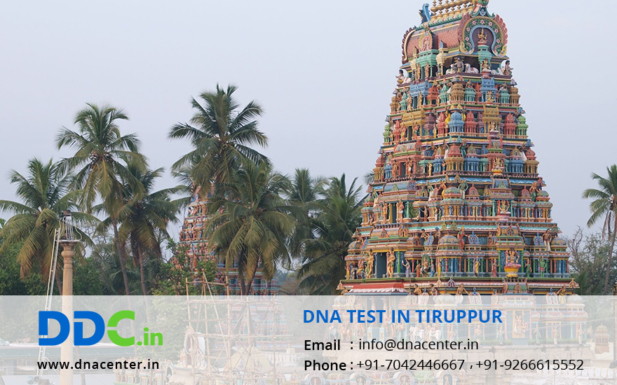 DNA Test in Tiruppur