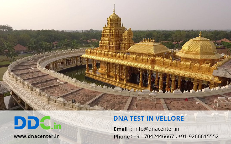 DNA Test in Vellore