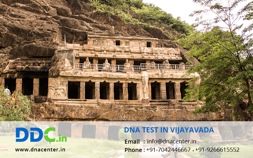 DNA Test in Vijayawada