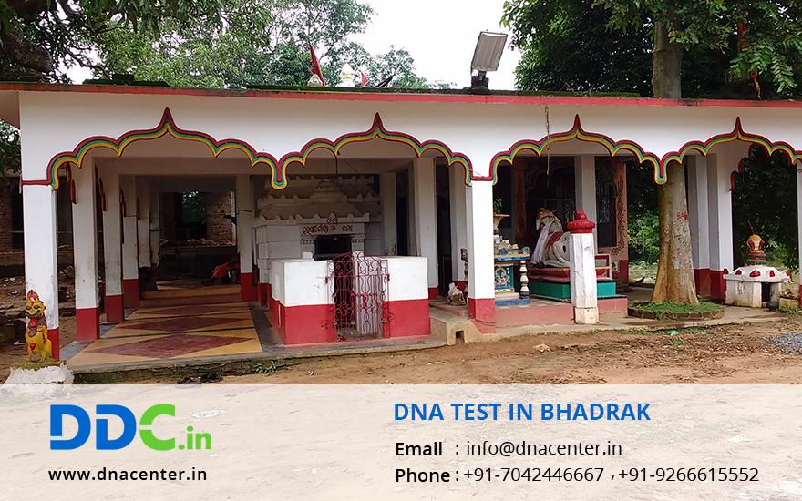 DNA Test in Bhadrak