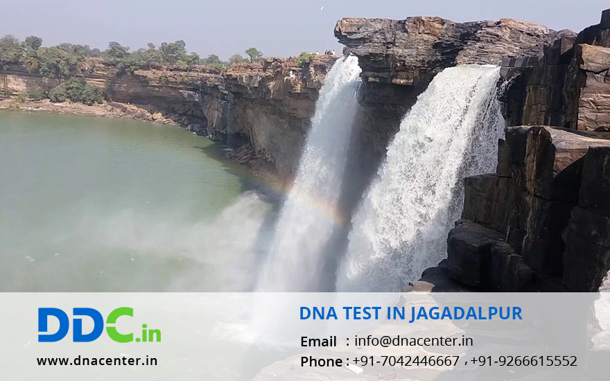 DNA Test in Jagadalpur