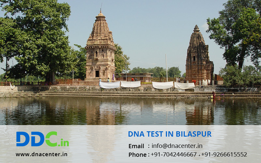 DNA Test in Bilaspur