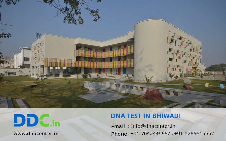 DNA Test in Bhiwadi
