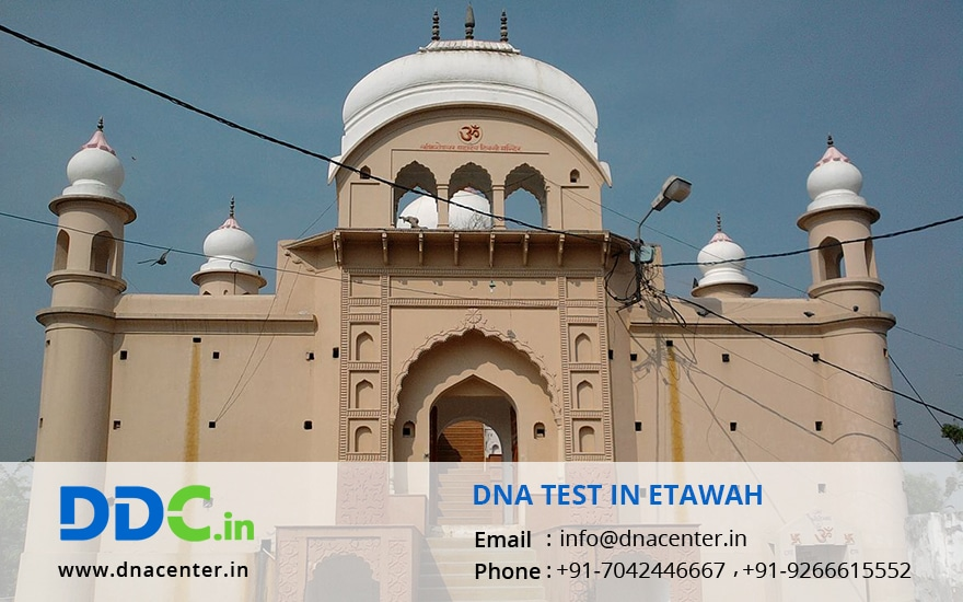 DNA Test in Etawah