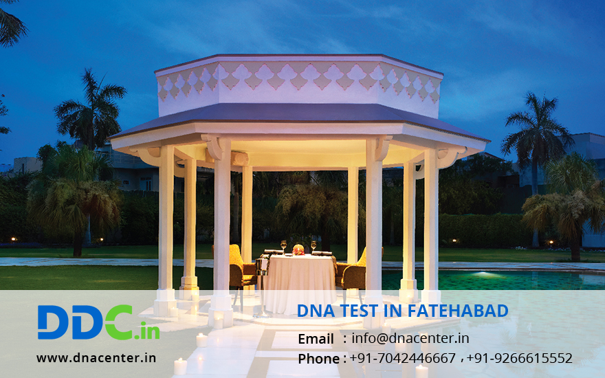 DNA Test in Fatehabad