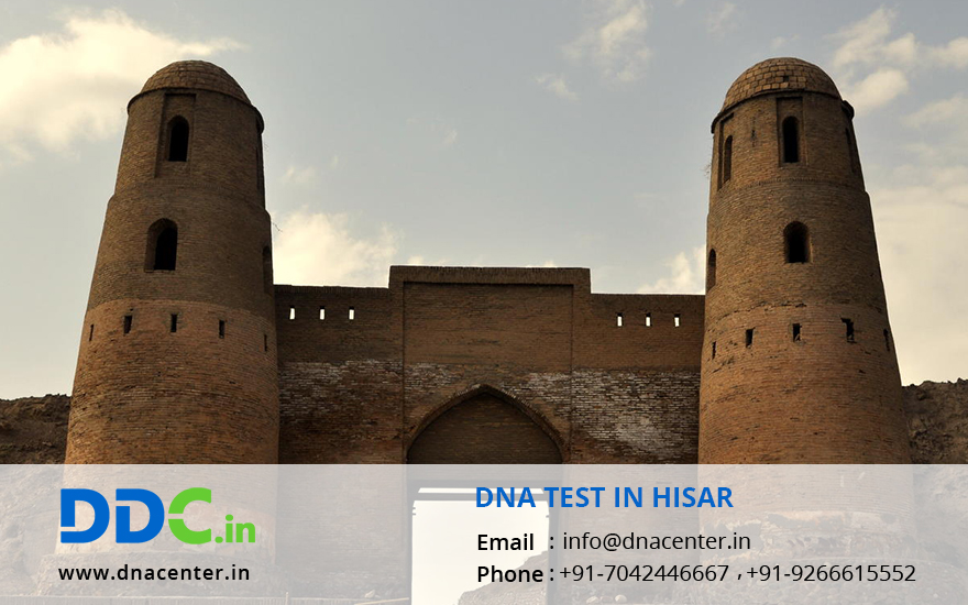 DNA Test in Hisar