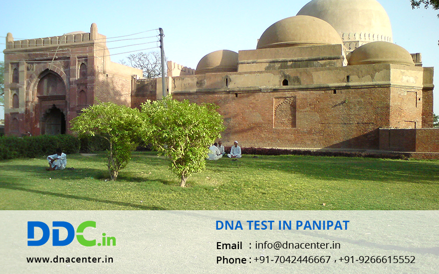DNA Test in Panipat