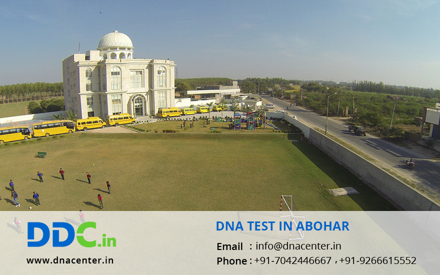 DNA Test in Abohar