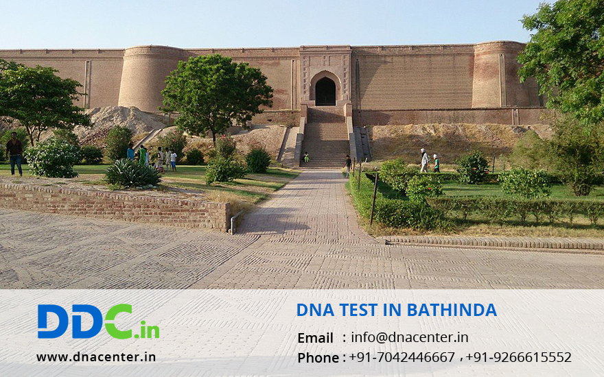 DNA Test in Bathinda