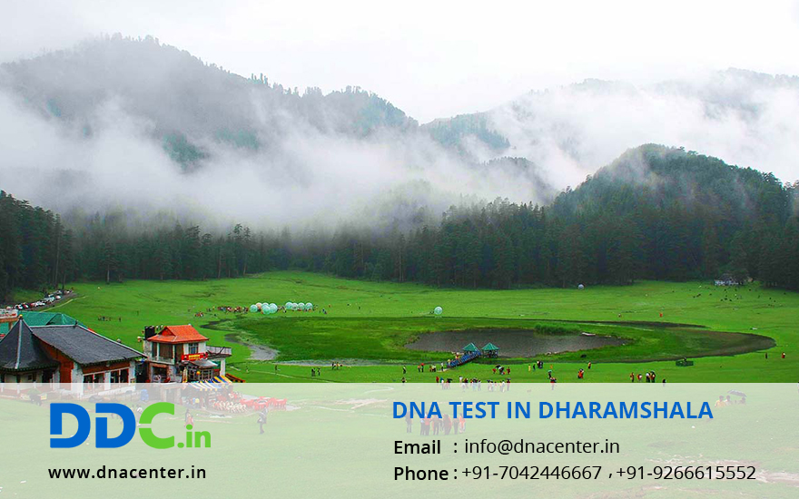 DNA Test in Dharamshala