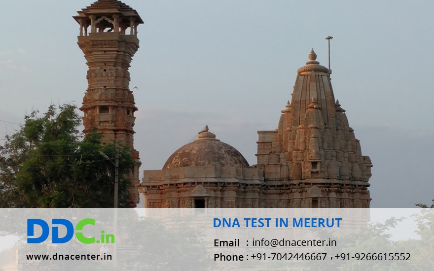 DNA Test in Meerut
