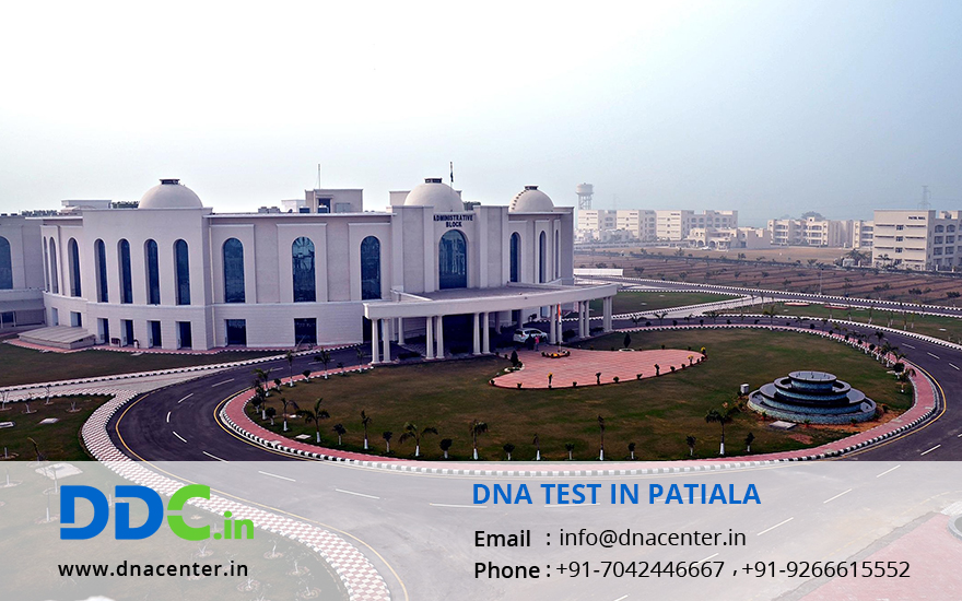 DNA Test in Patiala